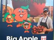 Harold's 81st - big apple 5