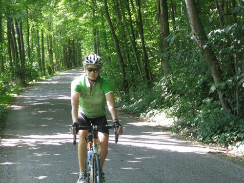 Woman on a bike on a road going through the forest